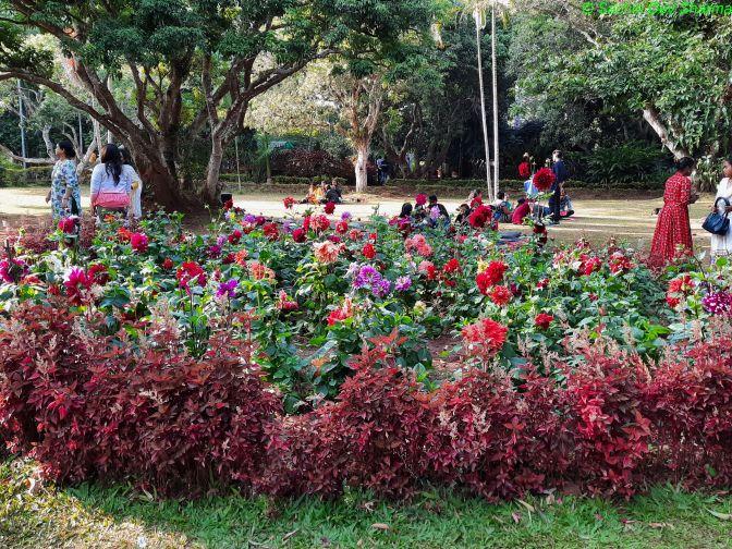 Padampuram Garden (2)